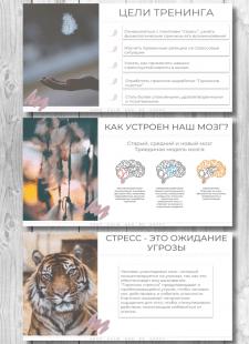 Презентация к авторскому тренингу по стрессу