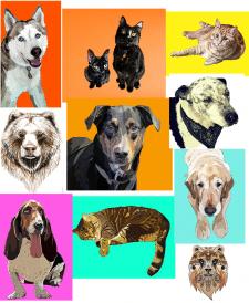 Портреты собак вектор принты для футболок