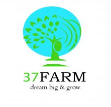 Ферма 37