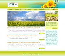 Дизайн сайта EURALIS (2010г.)