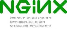Кастомная модификация последней сборки nginx.