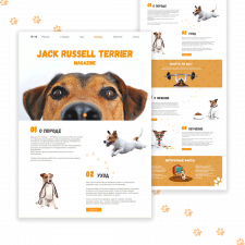 Web site - Jack Russell Terrier