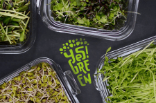 Логотип для упаковки микрозелени