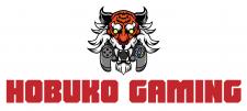 """Логотип для Youtube-канала """"Hobuko gaming"""""""