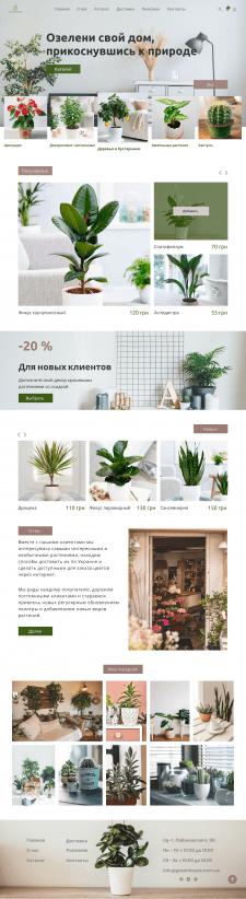 Интернет магазин цветов и комнатных растений