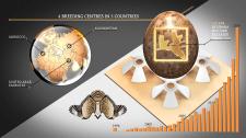 Houbara infographics