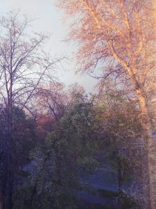 Обработка фото пейзажа в пастельных цветах