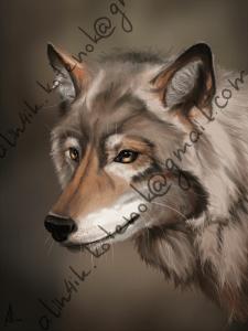 Волк. Диджитал