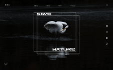 First screen of the site (concept) Save Nature