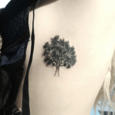 Тату дерево tattoo tree