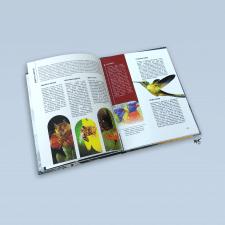Big illustrated encyclopedia of animals