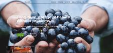 Сайт sohrani.pro