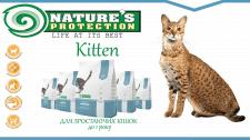 Рекламный баннер корма для кошек