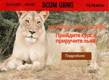 Дизайн Сайта по Обучению