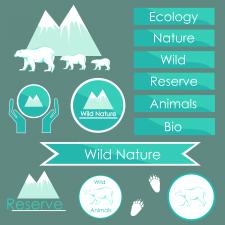 элементы дизайна экология