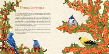 Дизайн разворота книги
