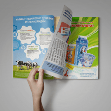 Рекламные модули в журнале