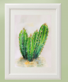 Картина кактус