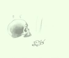 Skull)