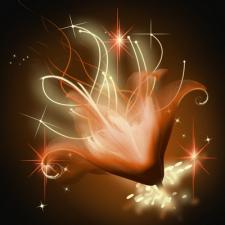 Огненный цветок_2