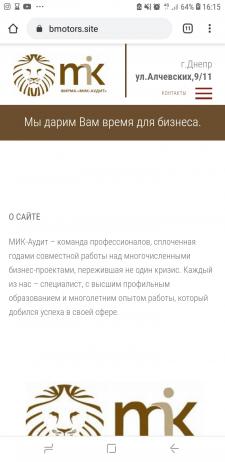 Мик-аудит