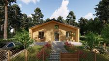 Эскизный проект садового дома