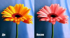 Замена цвета на цветке