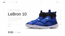 LeBron 10