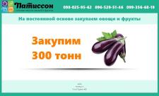 Создание сайта для службы оптовой закупки