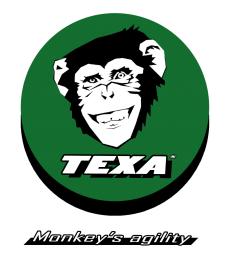 TEXA logo_2