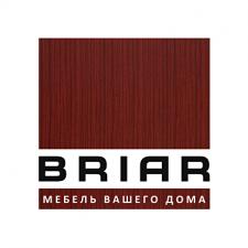 Логотип BRIAR