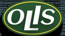 Проект логотипа в латинице.