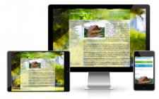 Разработка  сайта.