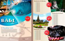 Буклет Bali