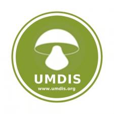 Разработка авторского логотипа