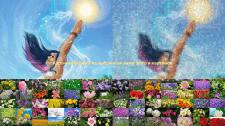 Картина-Мозайка из выбранных вами фото и картинок