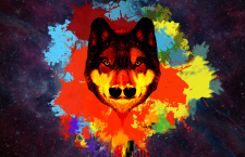 Wolf | Psychedelic