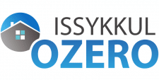 Логотип для сайта (векторная графика)