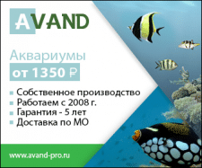 "Баннер по РСЯ для ""Avand"""