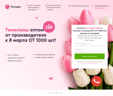Тюльпаны оптом от производителя к 8 март