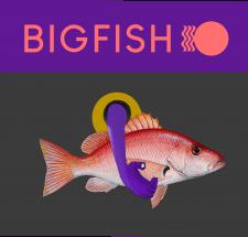 BRAND identity - Bigfish