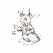 Белый кролик.