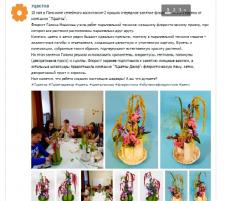7 цветов