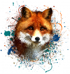 Fox in splash ink style