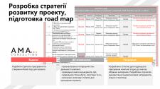 Розробка стратегії розвитку проекту, підготовка ro