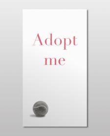 Adopt me App