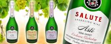 Разработка и дизайн этикеток игристых вин SALUTE