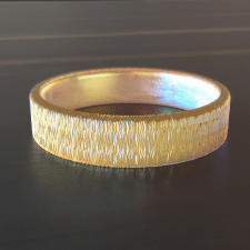 3D modeling and visualization of the ring