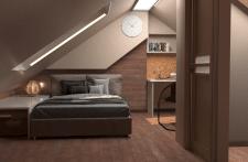 Совмещенный кабинет и спальня