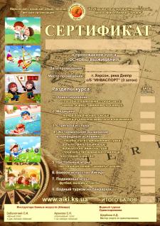 сертификат айкидо